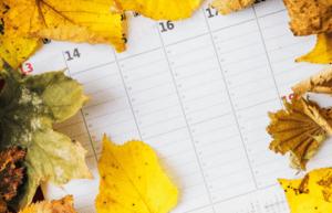 imagen 1 calendario