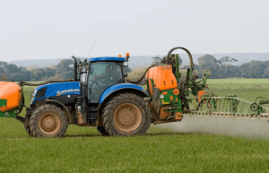 imagen 3 agricultura de plantación