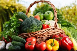 agricultura familiar ecologica